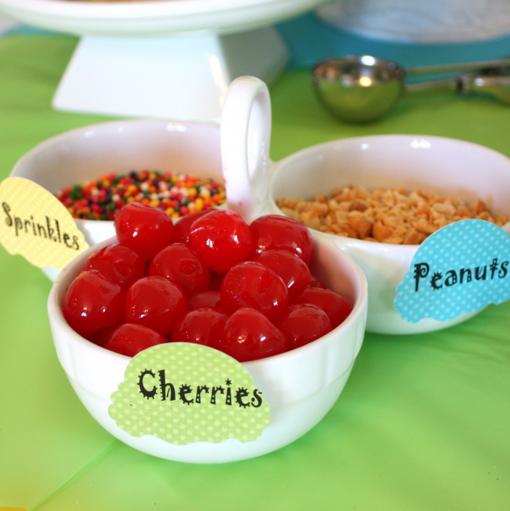 Ice Cream Bar Toppings