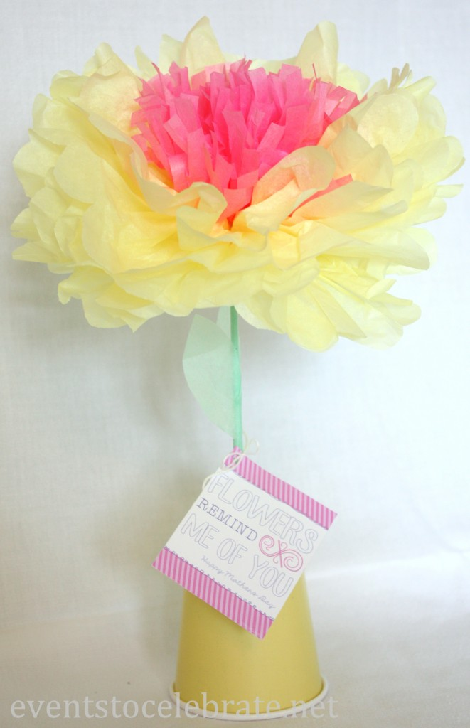 Tissue Paper Flower - Mother's Day Gift
