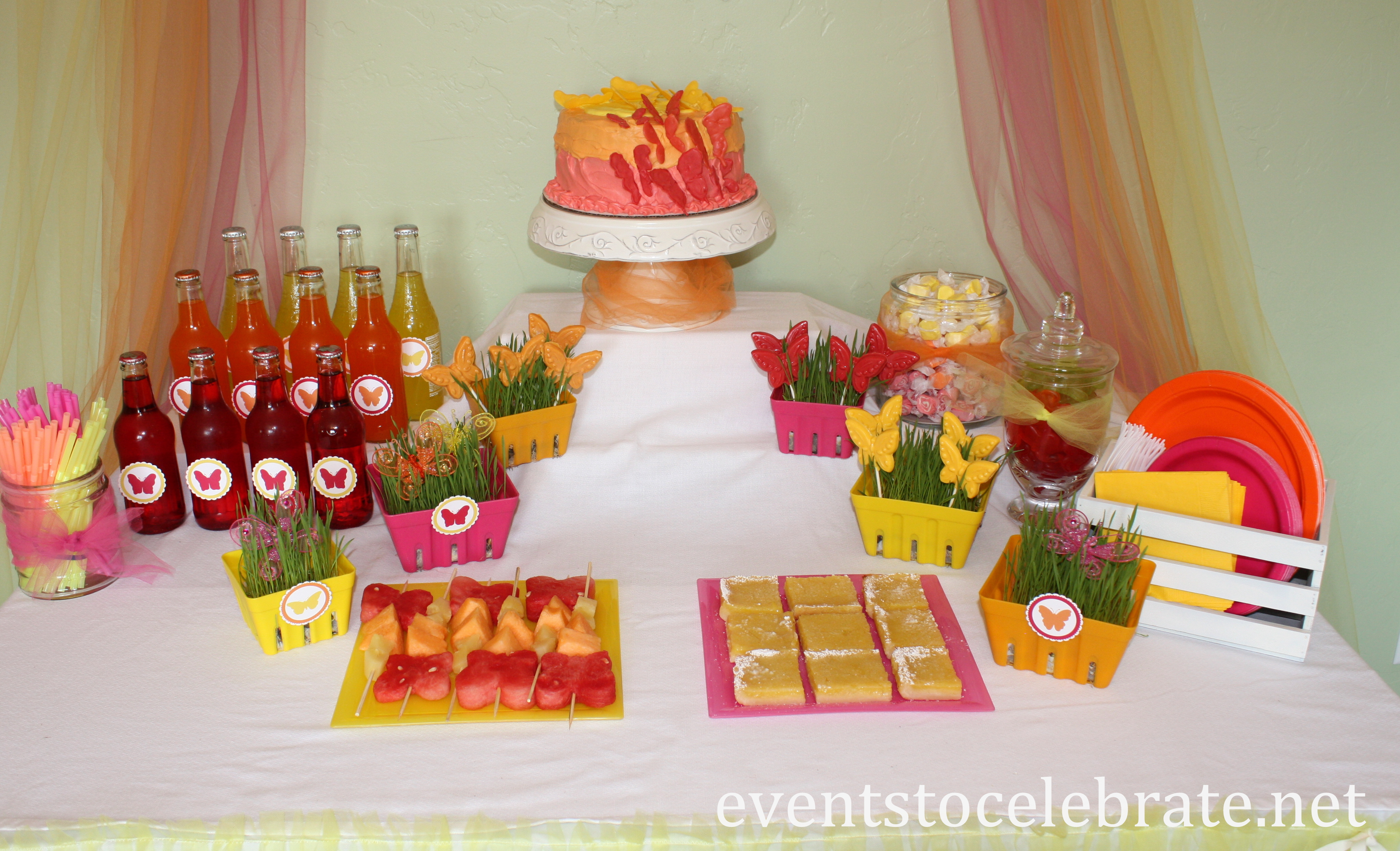 Butterfly Themed Birthday Party Food Desserts events to CELEBRATE