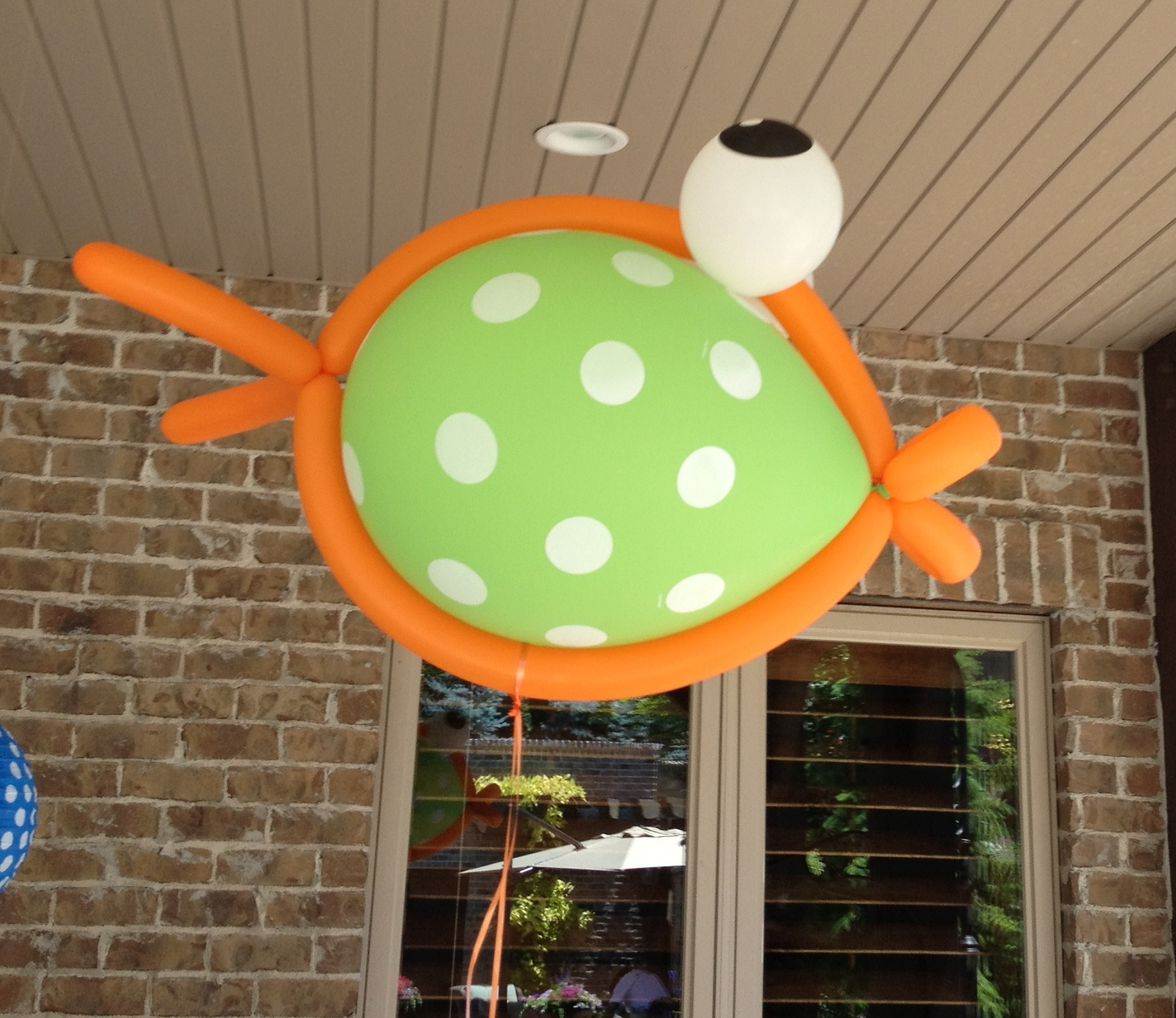 Swim party decorations archives events to celebrate for Fish party decorations