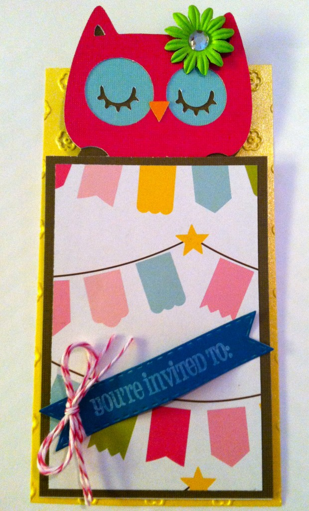 Night Owl Slumber Party Invitation - Owl in a Sleeping Bag