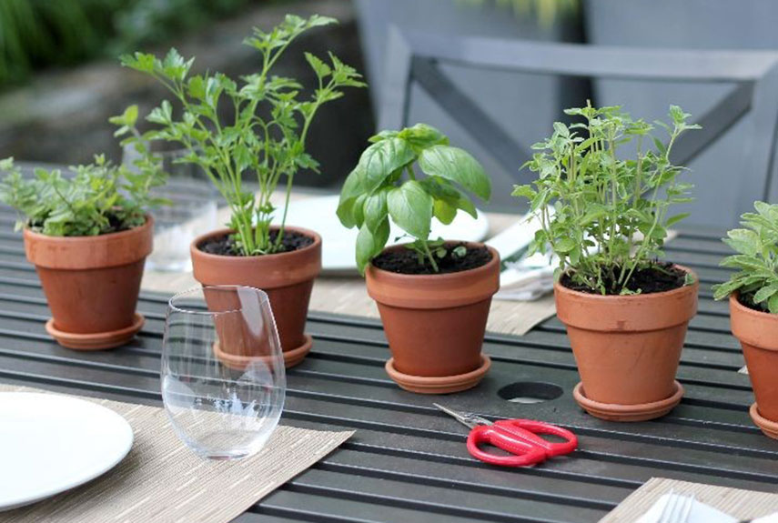 1ghk-outdoor-centerpiece-herb-pots-xln