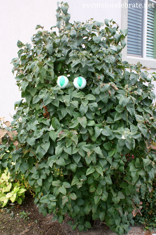 DIY Monster Tree Eyes - Events To Celebrate