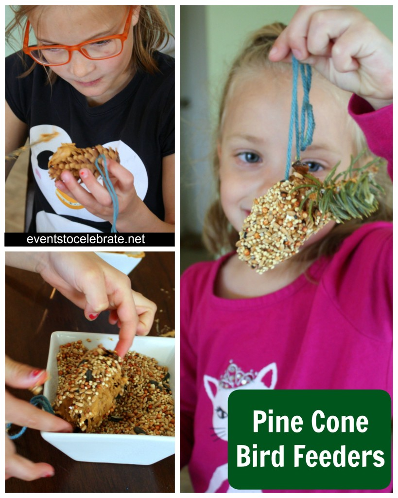 Nature Party - Pine Cone Bird Feeders - Events To Celebrate