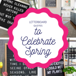 Letterboard-Quotes-to-Celebrate-Spring