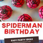Spiderman birthday party ideas for boys